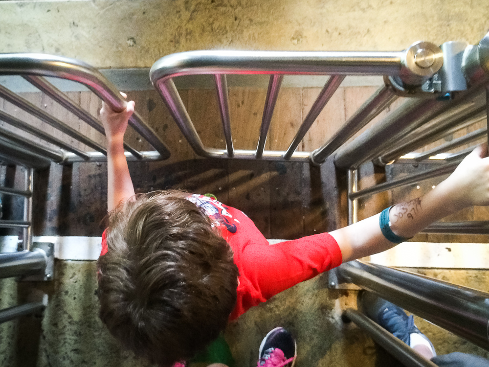 epilepsy dad waiting for roller coaster epilepsy